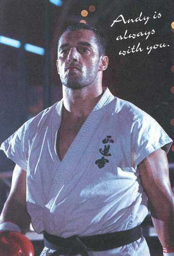Andy Hug Always